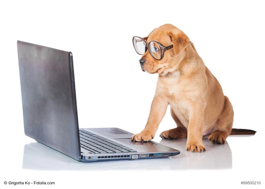Wann ist ein AV-Vertrag nötig? Datendrittverarbeitung im Online-Shop ...