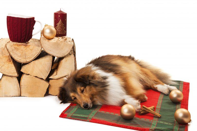 1 advent was christkind und weihnachtsmann niemals. Black Bedroom Furniture Sets. Home Design Ideas